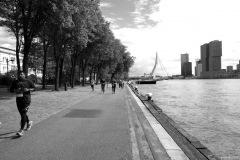 Impressionen-aus-Rotterdam4