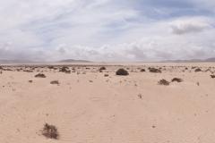 Pano Fuerteventura Wüste Corralejo